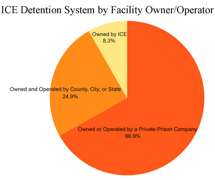 Pie graph showing breakdown of ICE detention facilities owned and/or operated by private companies