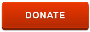 "Orange-red button with text saying, ""DONATE NOW"""