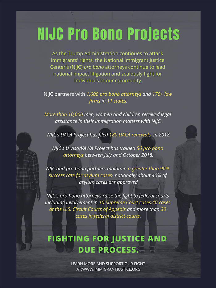 Infographic with statistics about NIJC's pro bono projects